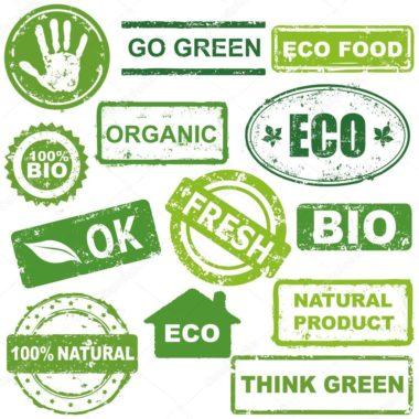 Fidel Sánchez Alayo comenta sobre los Productos orgánicos