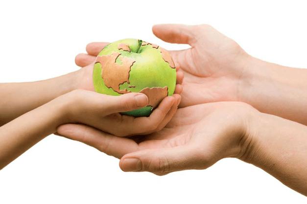 Fidel Sánchez Alayo comenta sobre la Alimentación sostenible