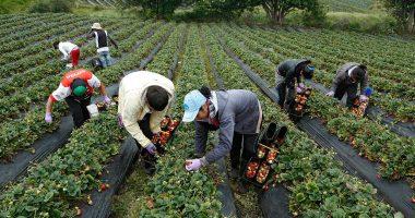 Tendencias globales en la alimentación y agricultura