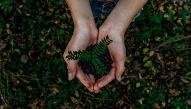 Métodos para una agricultura sostenible