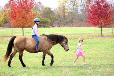 Psicoterapia de caballos
