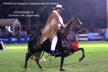 LV ESPERADA - Fidel Ernesto Sánchez Alayo