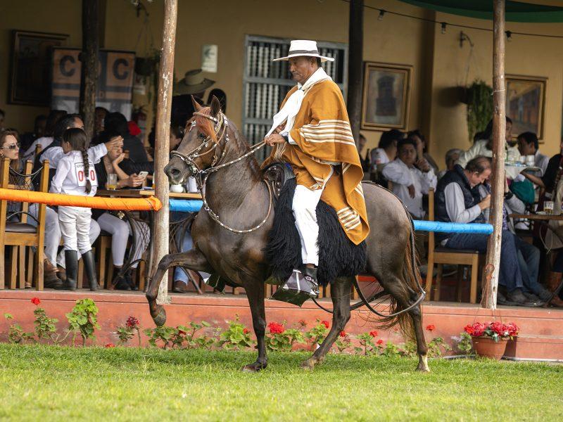 Montar a caballo FSA
