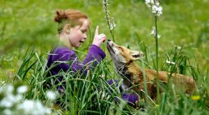 niña alimentando un zorro