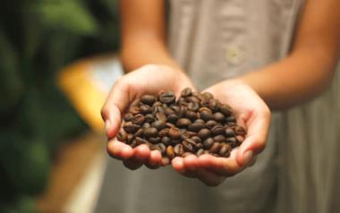 dia internacional del cafe peru