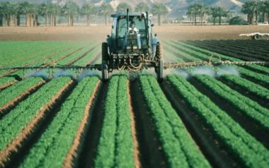 dia mundial de la agricultura 2020