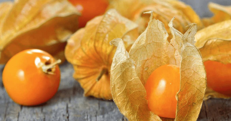 aguaymanto fruto peru