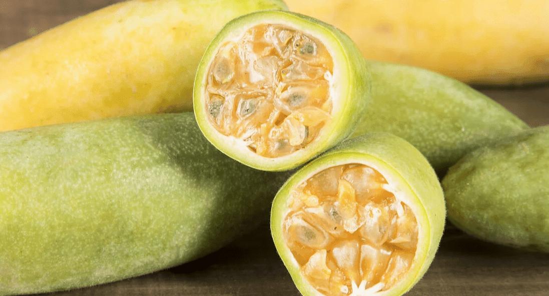 tumbo peru fruta
