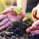 dia mundial del medio ambiente 2021